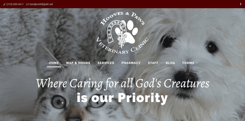 Hooves and Paws Veterinary Clinic - website design by Focused Idea